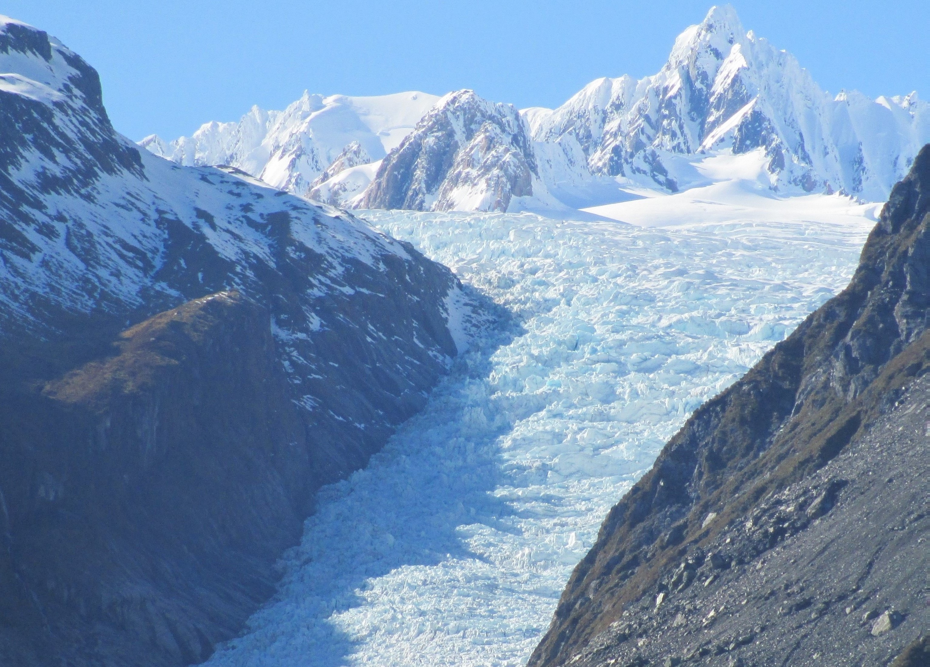 Fox Glacier, new zealand, west coast, travel, travel blog, top things to see, glacier