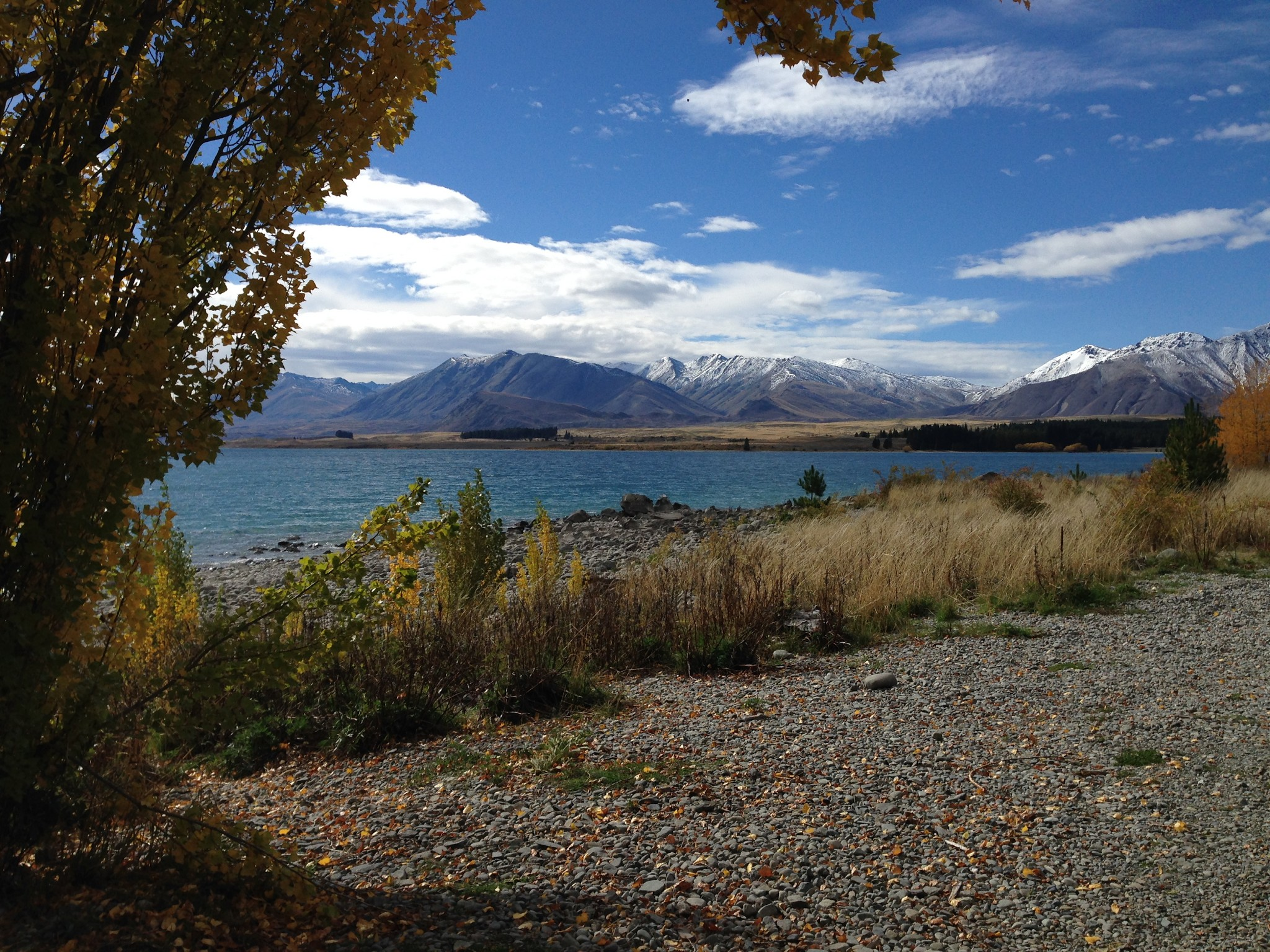 Lake Tekapo, Tekapo, lake, mountains, south island, things to see, New Zealand