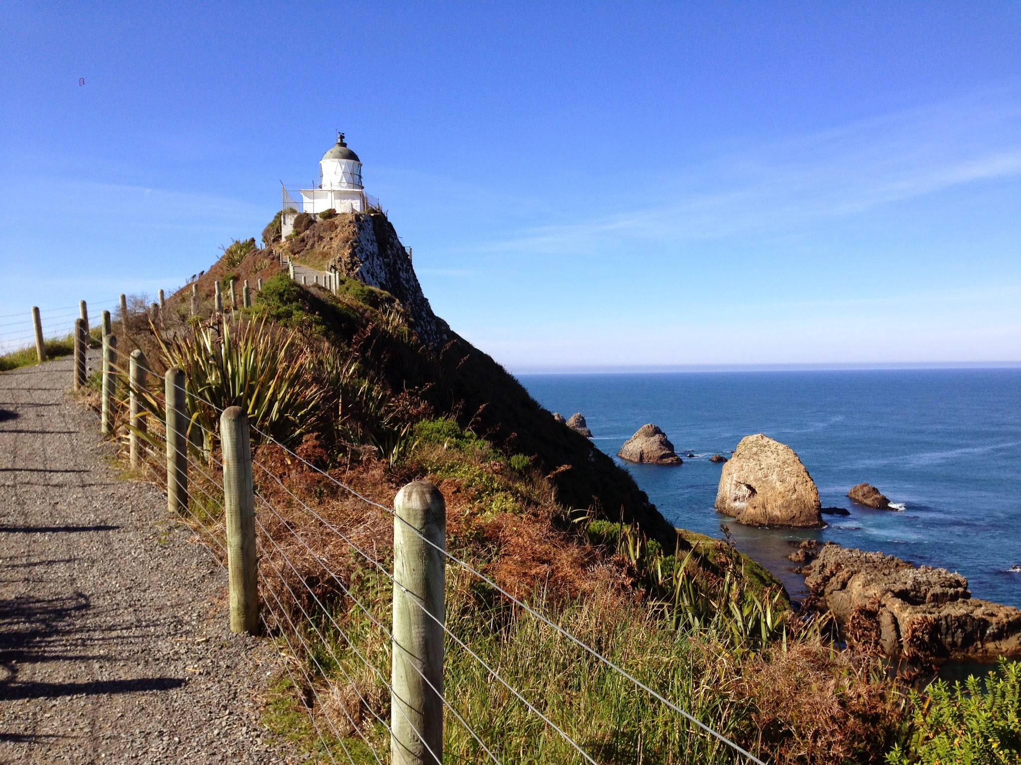 Nugget piont, catlins, the catlins, south coast, south island, new zealand, lighthouse, coastal, coast, coastal walk