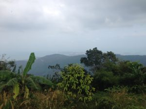 misty, viewpiont, travelling, travels, backpacking, backpackers, koh samui, tour, island,