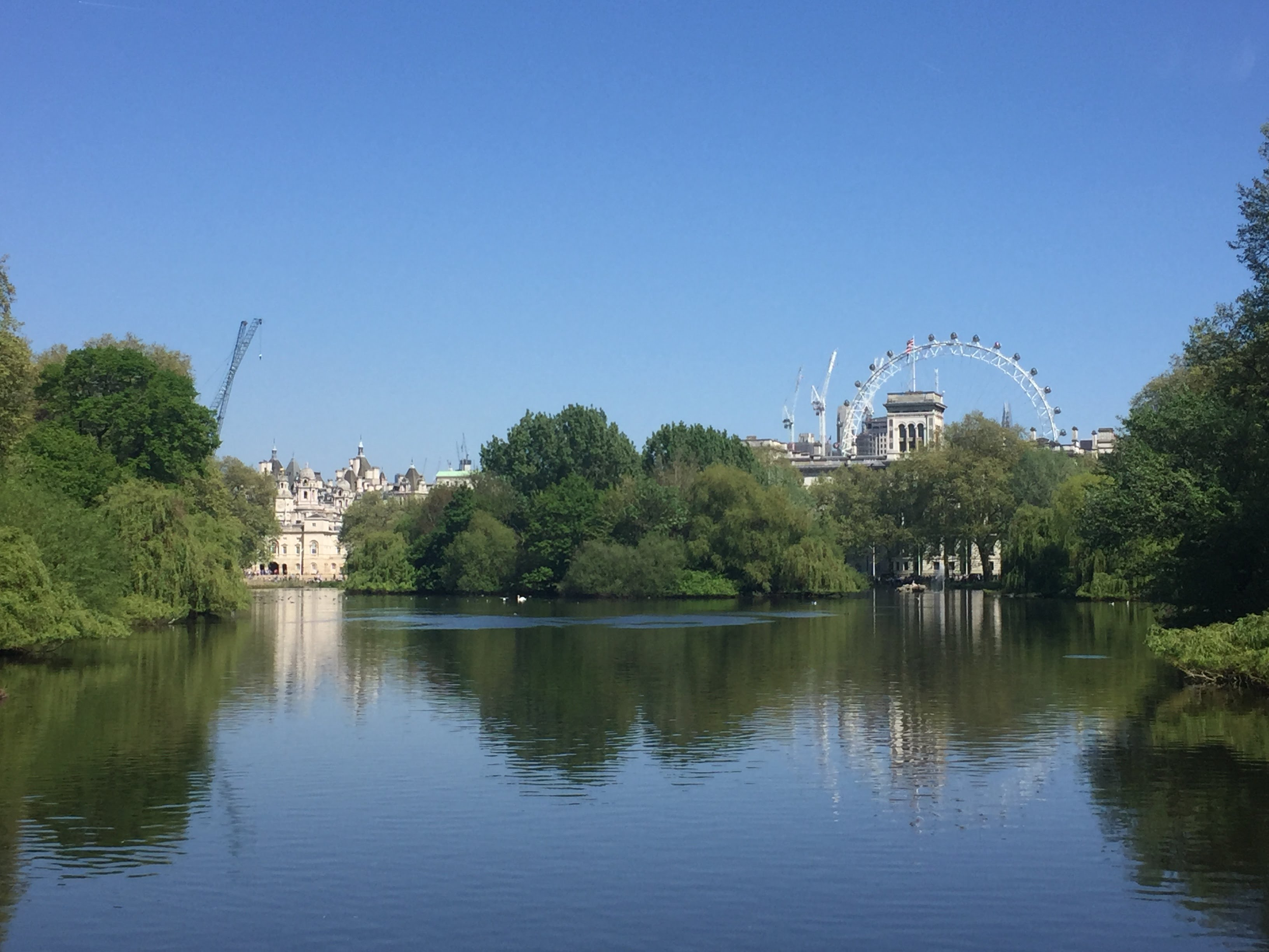 St james park, london eye, london, southbank, travels, travelling, city, london blog, blog, travel blog,