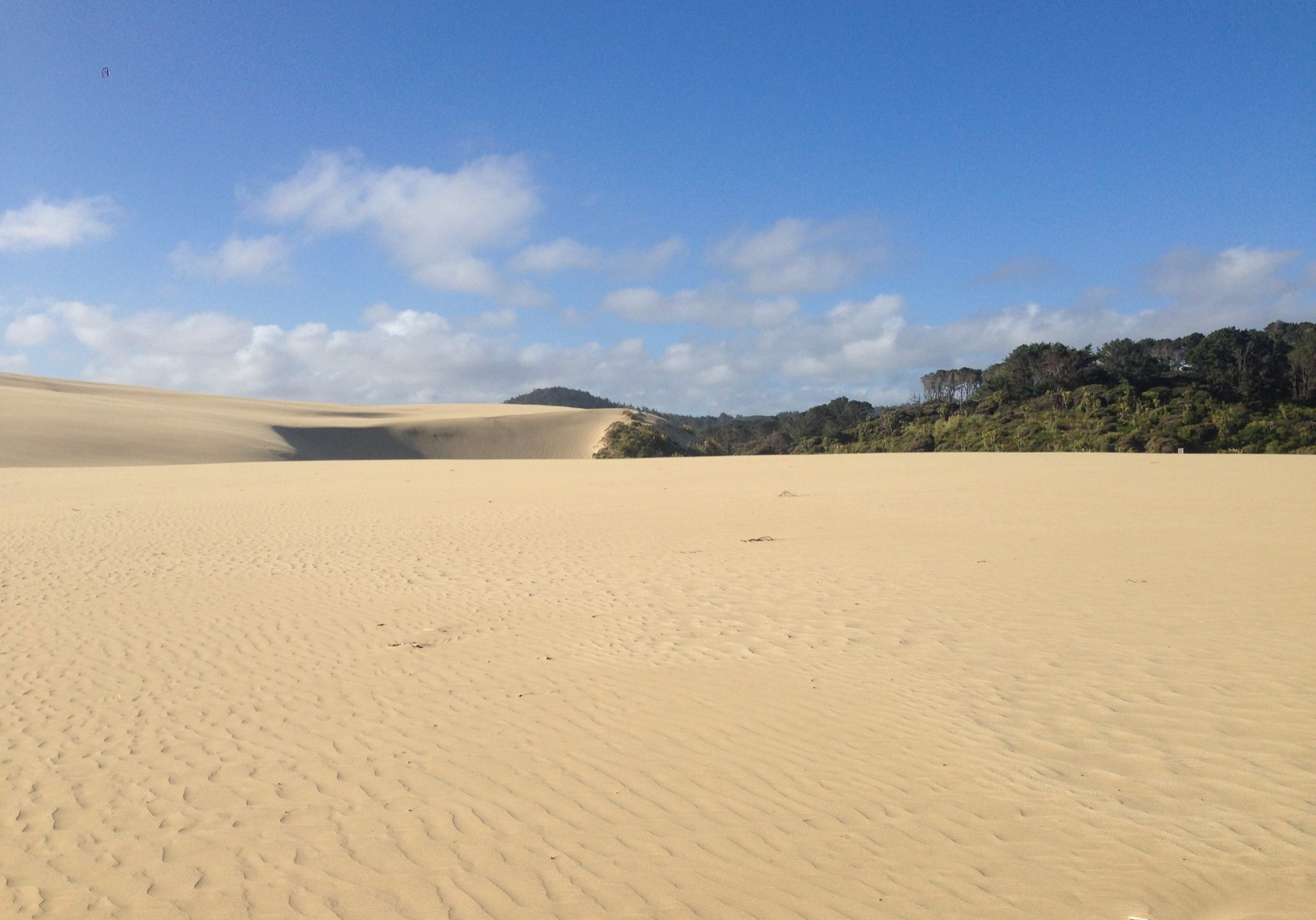 Northland, 90 mile beach, beach, sand, sand dunes, dunes,