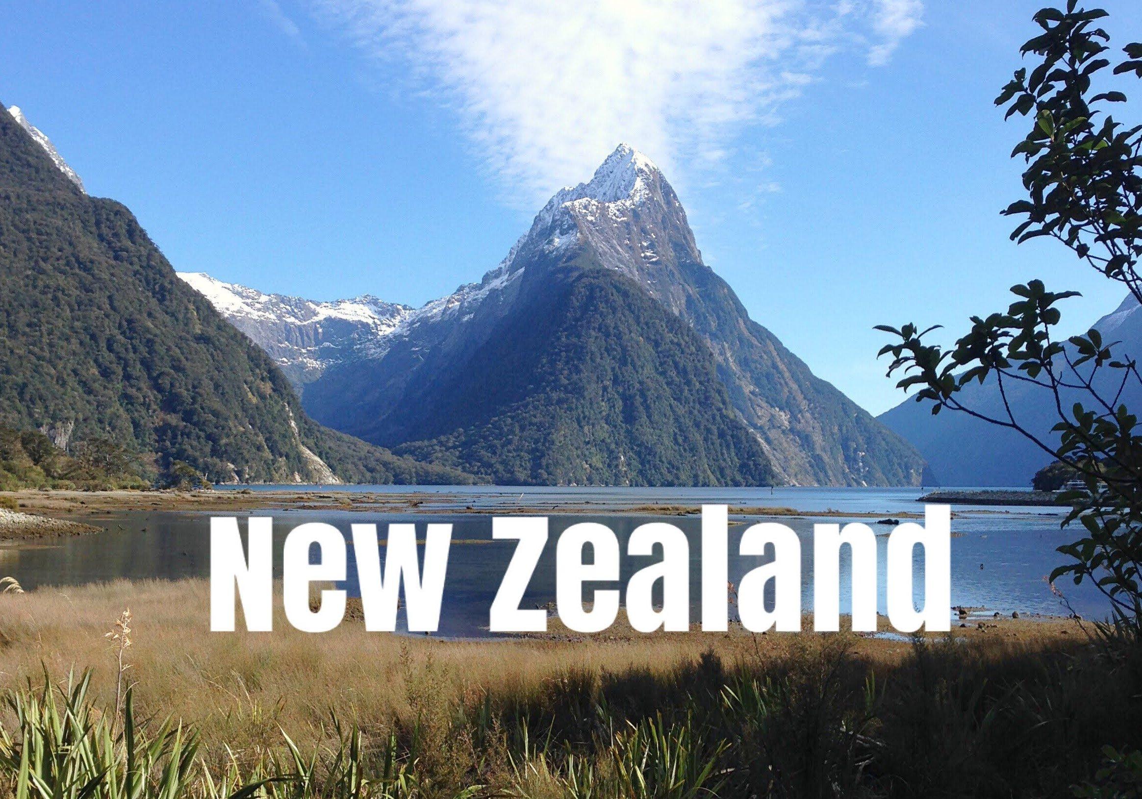 New Zealand, wanderdaze, blog, travelling, travel blog,